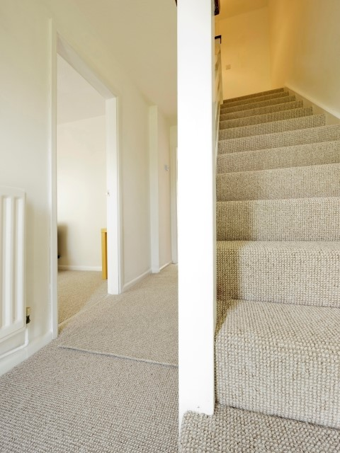Residential Carpet Cleaning from Carpet Bright