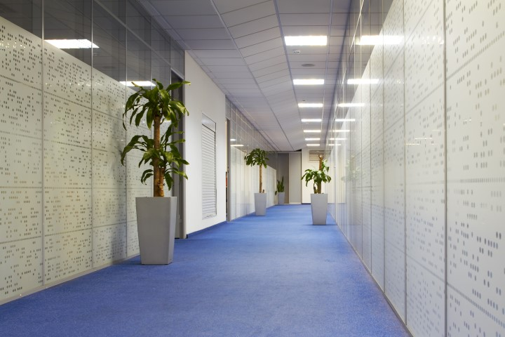 Commercial Carpet Cleaning for offices